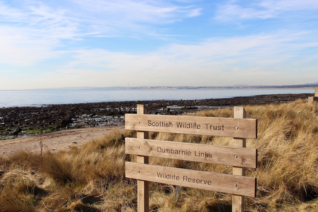 beautiful beaches on the Fife Coastal Path