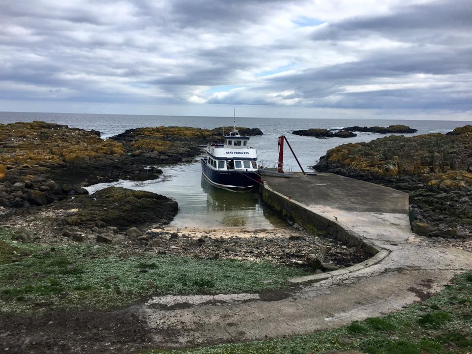 The Isle of May boat trips
