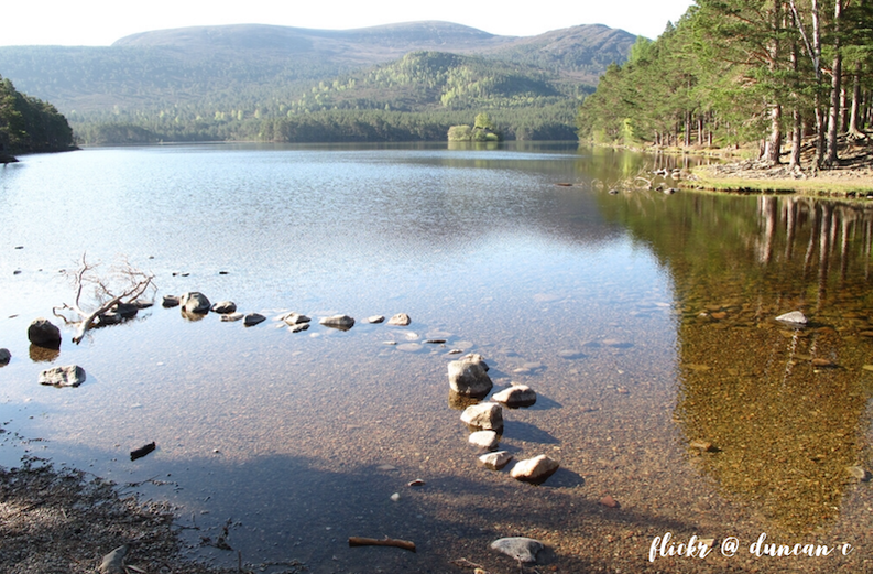 Places to visit in Aviemore, Rothiemurchas, Cairngorms, Scotland.