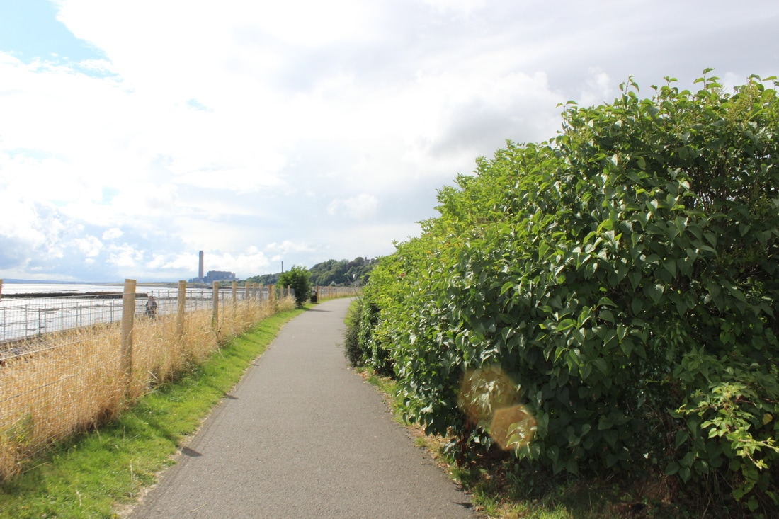 Coastal Path in Culross