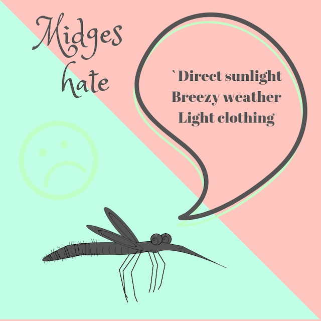 how to avoid the Scottish midge