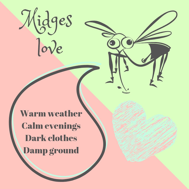 Things loved by the Scottish Midge