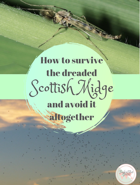 How to survive the dreaded Scottish midge and avoid it altogether